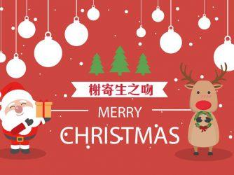 聖誕節暖心小故事你都知道了嗎?